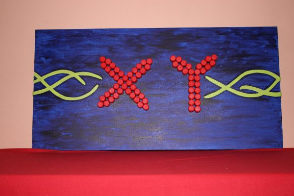 DNA e Mitosi